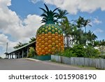 woombye  queensland  australia  ... | Shutterstock . vector #1015908190