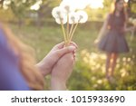 young spring fashion woman... | Shutterstock . vector #1015933690