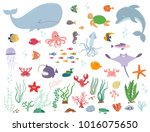 sea animals and water plants.... | Shutterstock .eps vector #1016075650