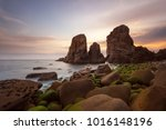 praia do louri al  parque... | Shutterstock . vector #1016148196