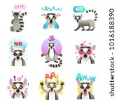lemur emotions set of similar... | Shutterstock . vector #1016188390