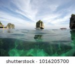 landscape over and under water...   Shutterstock . vector #1016205700