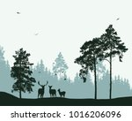 landscape with forest  deer and ... | Shutterstock .eps vector #1016206096