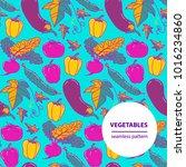 vector doodle vegetables... | Shutterstock .eps vector #1016234860