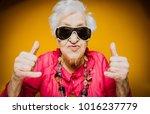 grandmother portrait set in the ... | Shutterstock . vector #1016237779
