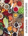 super food concept to benefit... | Shutterstock . vector #1016284000