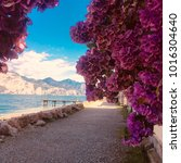 Garda Lake In The Summer