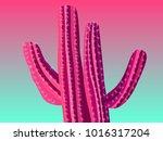 cactus. pink vector cactus.... | Shutterstock .eps vector #1016317204
