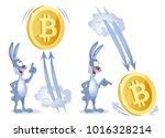 funny rabbit watches as bitcoin ... | Shutterstock .eps vector #1016328214