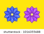 blue and purple diamond flower. ...   Shutterstock .eps vector #1016355688