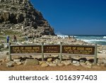 simon's town  south africa ... | Shutterstock . vector #1016397403