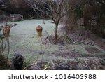 A Winter Garden Landscape...