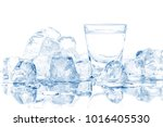 cold glass of vodka in ice... | Shutterstock . vector #1016405530