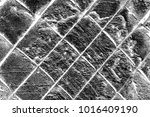 abstract background. monochrome ... | Shutterstock . vector #1016409190