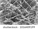 abstract background. monochrome ... | Shutterstock . vector #1016409199