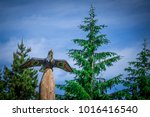 totems art and carvings at... | Shutterstock . vector #1016416540