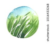 round watercolor illustration.... | Shutterstock . vector #1016433268
