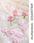 beautiful still life with small ... | Shutterstock . vector #1016447569