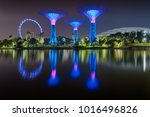 Gardens By The Bay Supertree...