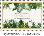 wedding invitation  background... | Shutterstock .eps vector #1016501149