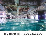 view of under a pier with... | Shutterstock . vector #1016511190