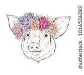 a beautiful pig in a wreath of... | Shutterstock .eps vector #1016526283