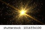 gold glittering bokeh glamour... | Shutterstock . vector #1016556100