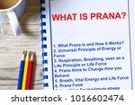 pranic healing chi energy  ... | Shutterstock . vector #1016602474
