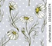 chamomile flower vector... | Shutterstock .eps vector #1016610574