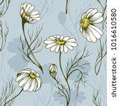 chamomile flower vector...   Shutterstock .eps vector #1016610580