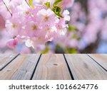selective focus image of empty... | Shutterstock . vector #1016624776