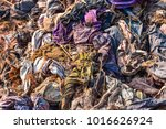 garbage from debris that is... | Shutterstock . vector #1016626924