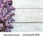 lilac flowers on a old wooden... | Shutterstock . vector #1016645398