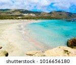 beach coast with pink sand sea... | Shutterstock . vector #1016656180