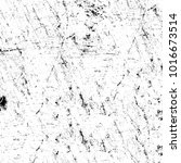 chaotic grunge ink particles.... | Shutterstock . vector #1016673514