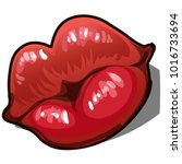 female sexy red lips isolated... | Shutterstock .eps vector #1016733694