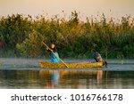 danube delta  romania  august...   Shutterstock . vector #1016766178