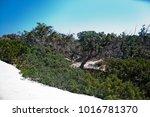 wonderful beach of the island... | Shutterstock . vector #1016781370