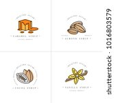 vector set design colorful... | Shutterstock .eps vector #1016803579