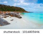 dolphin bay  south australia   Shutterstock . vector #1016805646