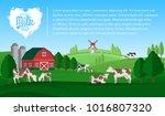 vector milk illustration.... | Shutterstock .eps vector #1016807320