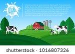 vector milk illustration.... | Shutterstock .eps vector #1016807326