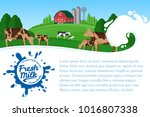 vector milk illustration with... | Shutterstock .eps vector #1016807338
