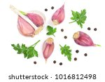 garlic with peppercorns and... | Shutterstock . vector #1016812498
