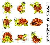 happy turtle icons set. cartoon ... | Shutterstock .eps vector #1016815570