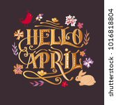 hand sketched hello april text... | Shutterstock .eps vector #1016818804