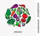 vegetable flat  icon.... | Shutterstock .eps vector #1016835244