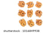 walnut kernels isolated on... | Shutterstock . vector #1016849938