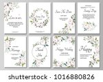 set of card with flower rose ... | Shutterstock .eps vector #1016880826