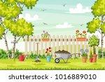 spring landscape with garden... | Shutterstock .eps vector #1016889010